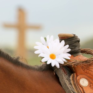 Horse and Cross